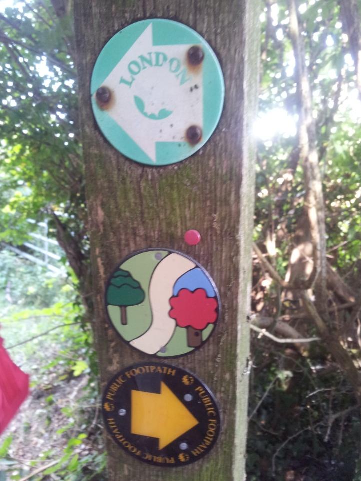 Path: trees