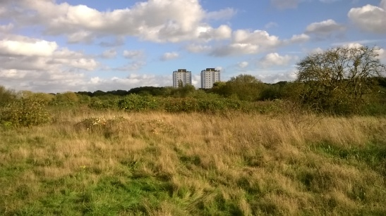 Hounslow Heath OS beginnings