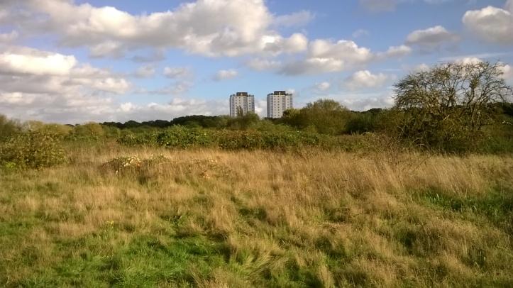 Hounslow Heath OS beginnings