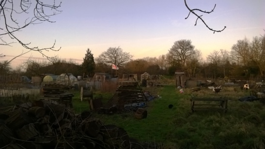 Melancholic allotments I