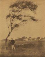 Gertrude Kasebier, 'Pastoral', 1905
