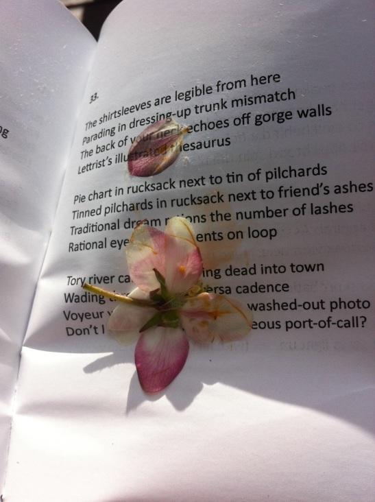 Blossom capture