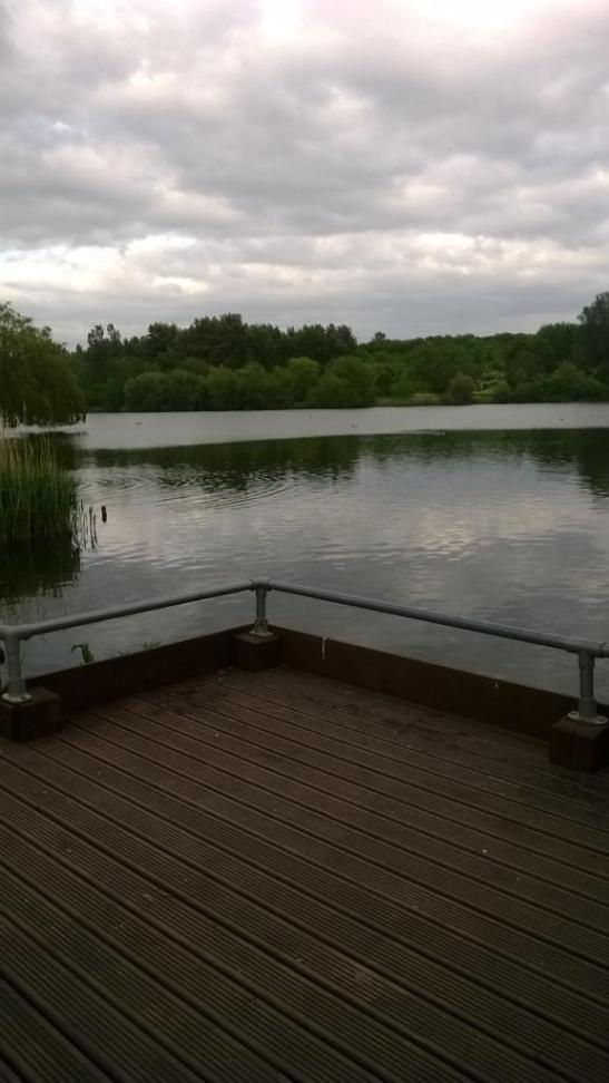 (yet another) gloomy lake
